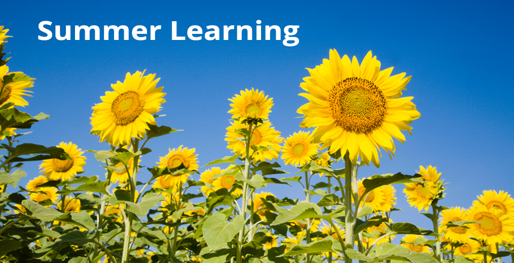 Happy a Great Summer and Keep Learning!